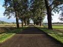 Zpevněná cesta levobřežním luhem Odry kolem fotbalového hřiště v obci Czerna.
