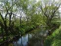 Lehce regulovaná Odra pod Jeseníkem, v dolní části chráněného území Meandry staré Odry.