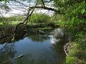 Odra u Bernartic posílená o vodu potoka Teplá.