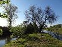 Cíp soutoku Odra / Olše (vlevo) v chráněném území Hraniční meandry Odry.