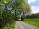 Jarní barvy u cesty po pravém břehu Odry u Výškovic.