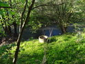 Studna na levém břehu Odry pod chráněným územím Vrásový soubor v Klokočůvku.