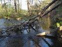 Klikatý potok posiluje Odru zprava.