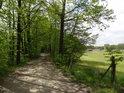 Cesta kolem rybníka Velký Váček.