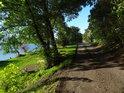 Cesta po pravém břehu Odry pod přístavem Widuchowa.