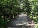 Lávka přes potok Trzyciana asi 250 m nad ústím do Odry.