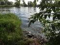 Vlny na levém břehu Západní Odry v obci Meschrerin byly způsobeny plující motorovou lodí.